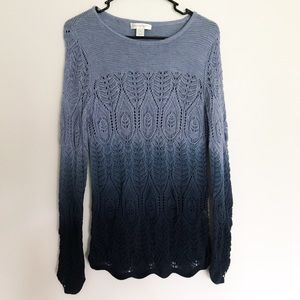 Christopher & Banks Blue Ombré Sweater